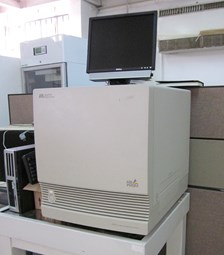 Real-Time PCR - 1